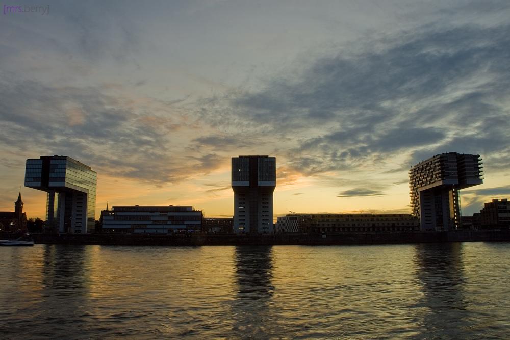 Kölner Kranhäuser im Rheinau-Hafen
