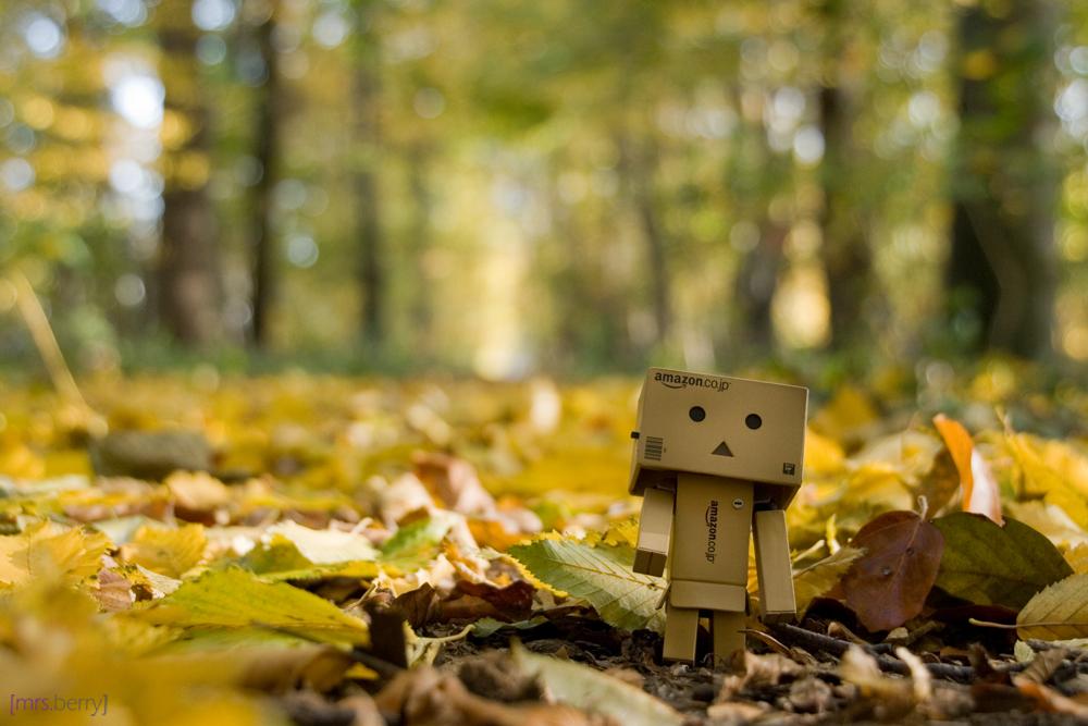 Danbos Herbstspaziergang