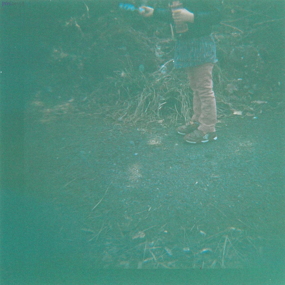 Lomografie: Testbilder mit der Diana F+ Zebra
