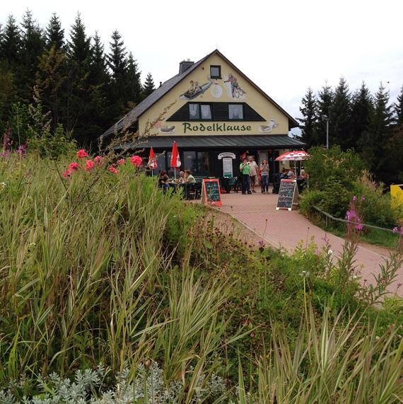 Auf der Sommerrodelbahn in Altenberg