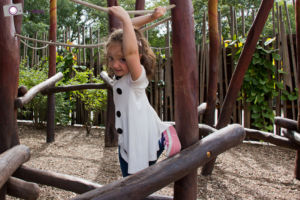 Dresdner Zoo: Kletterparcour