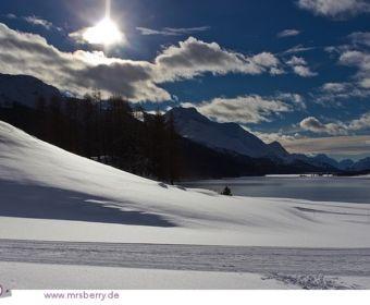Silvaplana Surlej, mit Blick auf die Alpen und den Lago di Silvaplana