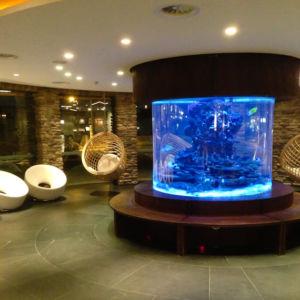 Aquarium im Leading Family Hotel & Resort ALPENROSE
