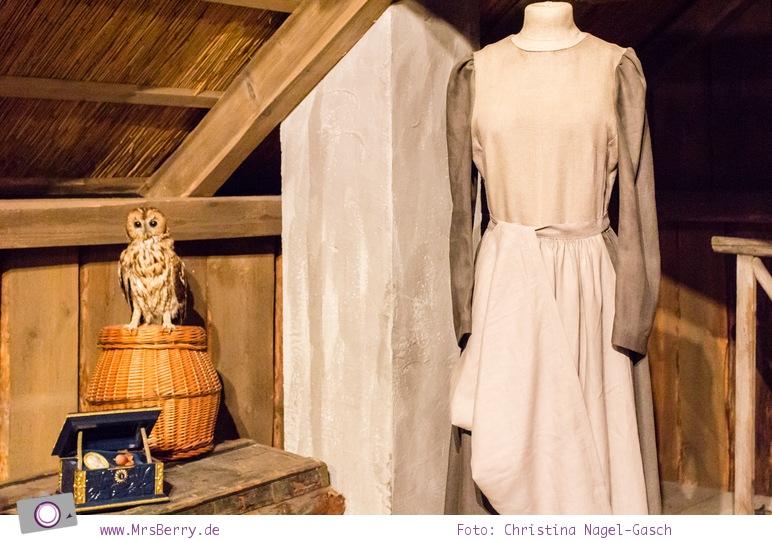 Drei Haselnüsse für Aschenbrödel: die Kammer von Aschenbrödel mit Eule Rosalie und dem Kästchen mit den drei Haselnüssen