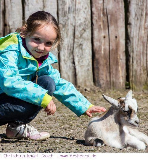 Erlebnis-Zoo Arche Noah: In Grömitz sind Kinder hautnah dabei