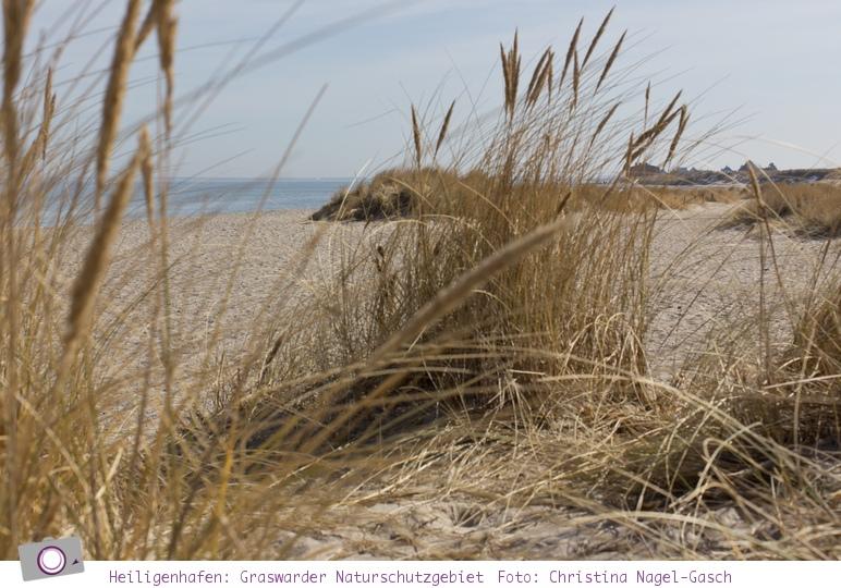Heiligenhafen - das Graswarder Naturschutzgebiet