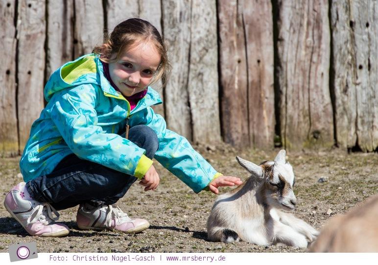 Ostsee im Frühling: 11 Tipps für deinen Urlaub in Grömitz - 10 Zoo Arche Noah