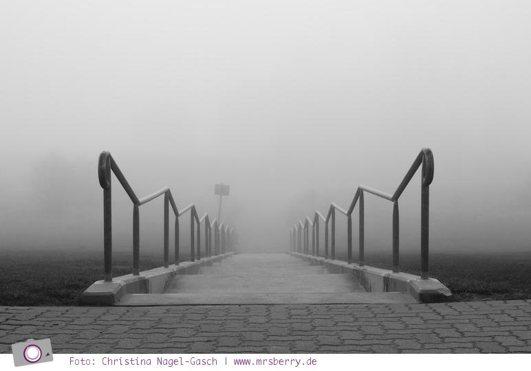 Ostsee im Frühling: 11 Tipps für deinen Urlaub in Grömitz - 7 Naturschauspiel Nebel