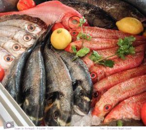 Essen in Portugal: frischer Fisch - vom Meer auf den Tisch