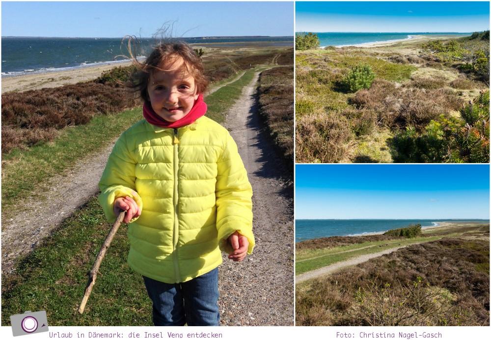 Urlaub in Dänemark: Tipps für den Limfjord - die Insel Venø entdecken