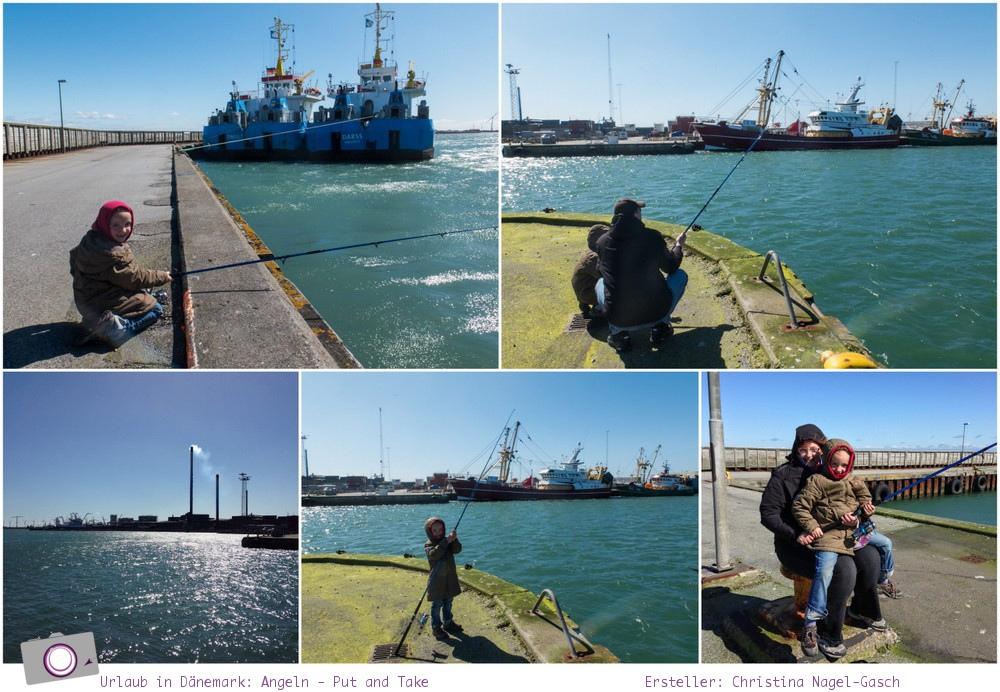 Urlaub in Dänemark: Tipps für den Limfjord - Angeln – Put and Take