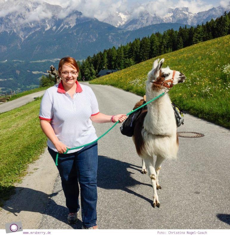 Reisefit: Bewegung beim Lamatrekking in den Alpen