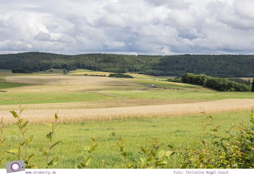 Urlaub in der Eifel: Lindner Ferienpark am Nürburgring - Aussicht ins Grüne