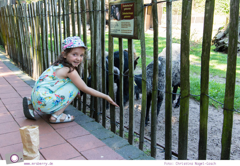 Ferien im Emsland: Tierpark Nordhorn - Tiere füttern