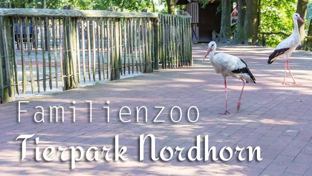 Ferien im Emsland: Tierpark Nordhorn