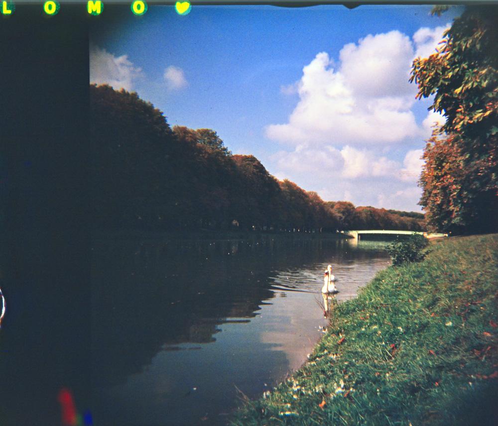 Herbst in Köln analog - Lomography mit der Diana F+