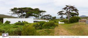 Südafrika: Table Mountain National Park