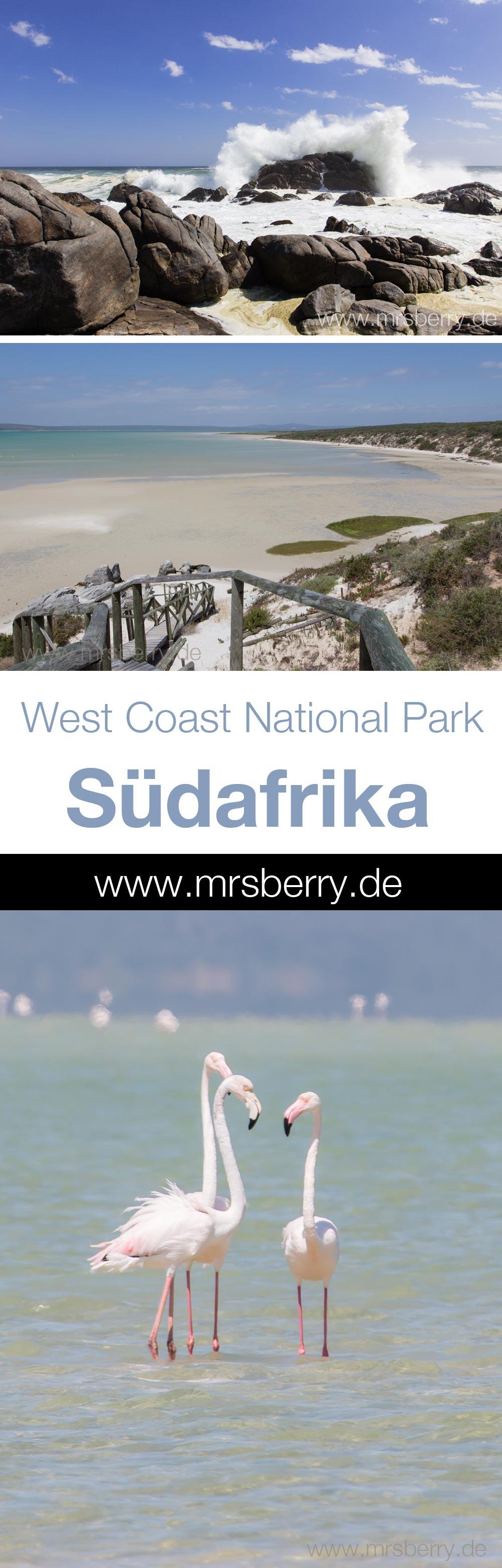 West Coast National Park in Südafrika | MrsBerry Reisetipps für eine Südafrika Rundreise