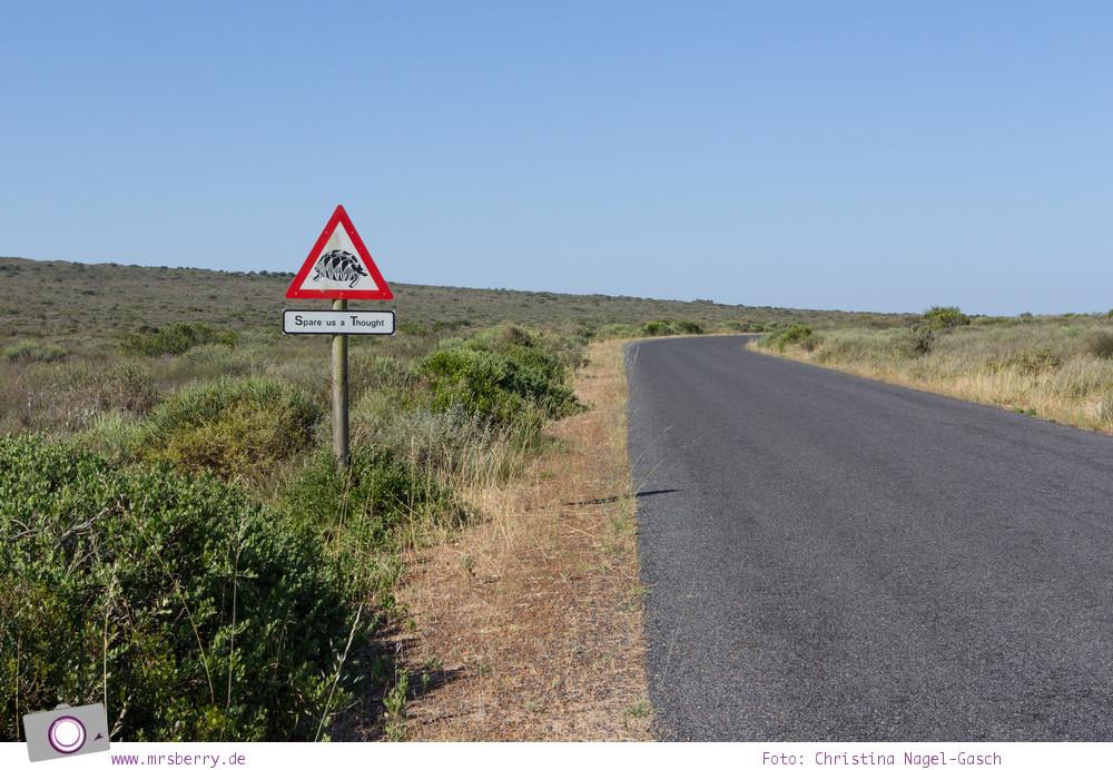Südafrika (Western Cape): West Coast National Park