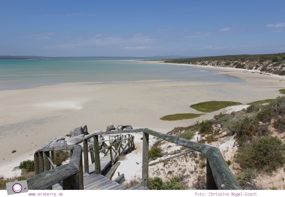 Südafrika (Western Cape): Langebaan-Lagune im West Coast National Park
