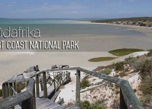 Südafrika #5: West Coast National Park – mein Stück vom Paradies