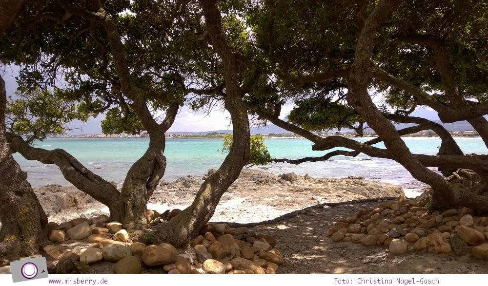 Südafrika: Gordons Bay
