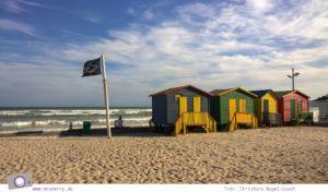 Südafrika: Surfen rund um Kapstadt - Muizenberg
