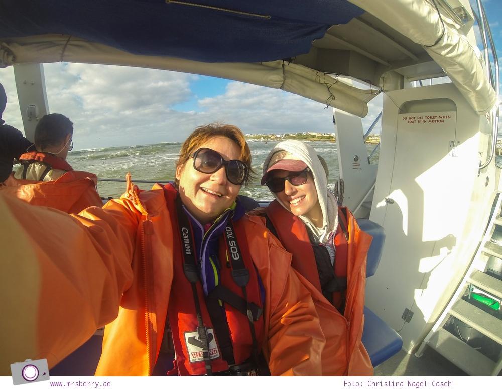 Gansbaai bei Hermanus, Südafrika: Tauchen mit dem großen Weißen Hai - Shark Cage Dinving in South Africa