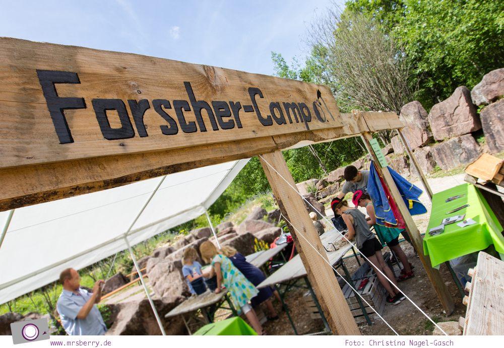 Ausflugsziele_Eifel_mit_Kindern_Dinosaurierpark_Teufelsschlucht_9