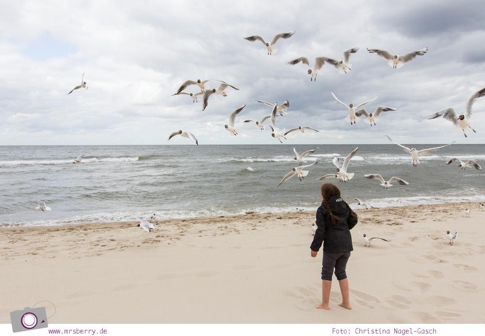 Usedom - Ausflüge für Familien und Kinder: ein Tag am Strand