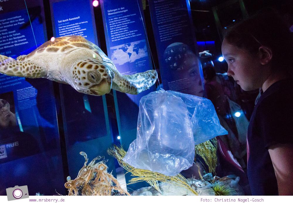 Ozeaneum in Stralsund: Müll - Gefahr für die Meerestiere