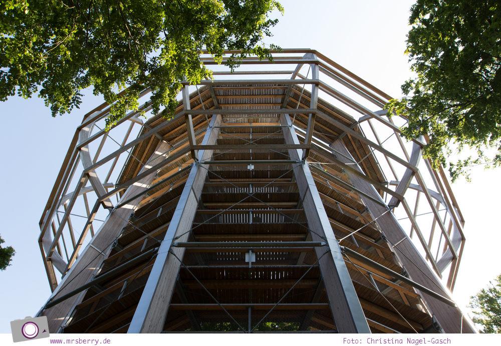 Rügen erleben: 5 Reisetipps für die Insel - Baumwipfelpfad im Naturerbe-Zentrum
