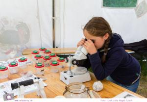 Rügen erleben: Forscherzelt im Besucher-Zentrum am Königsstuhl