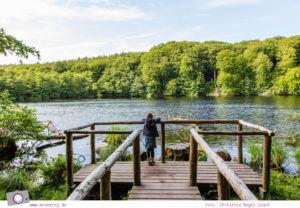 Rügen erleben: UNESCO Weltnaturerbe Buchenwälder im Nationalpark Jasmund - Aussicht auf den Herthasee