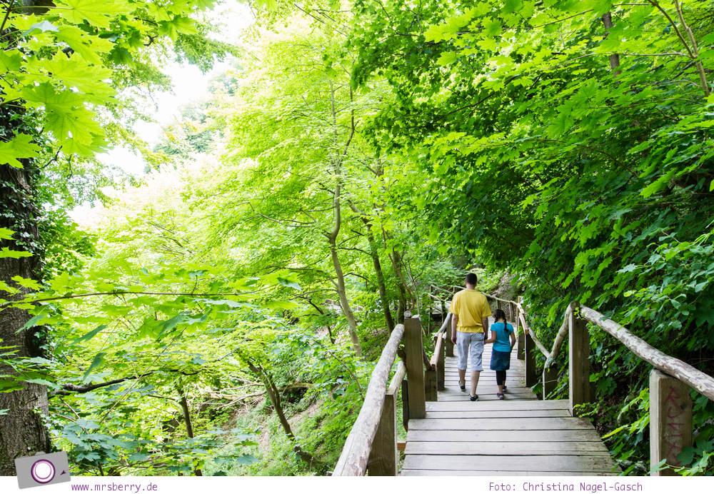Rügen erleben: Abstieg zum Strand am Königsstuhl