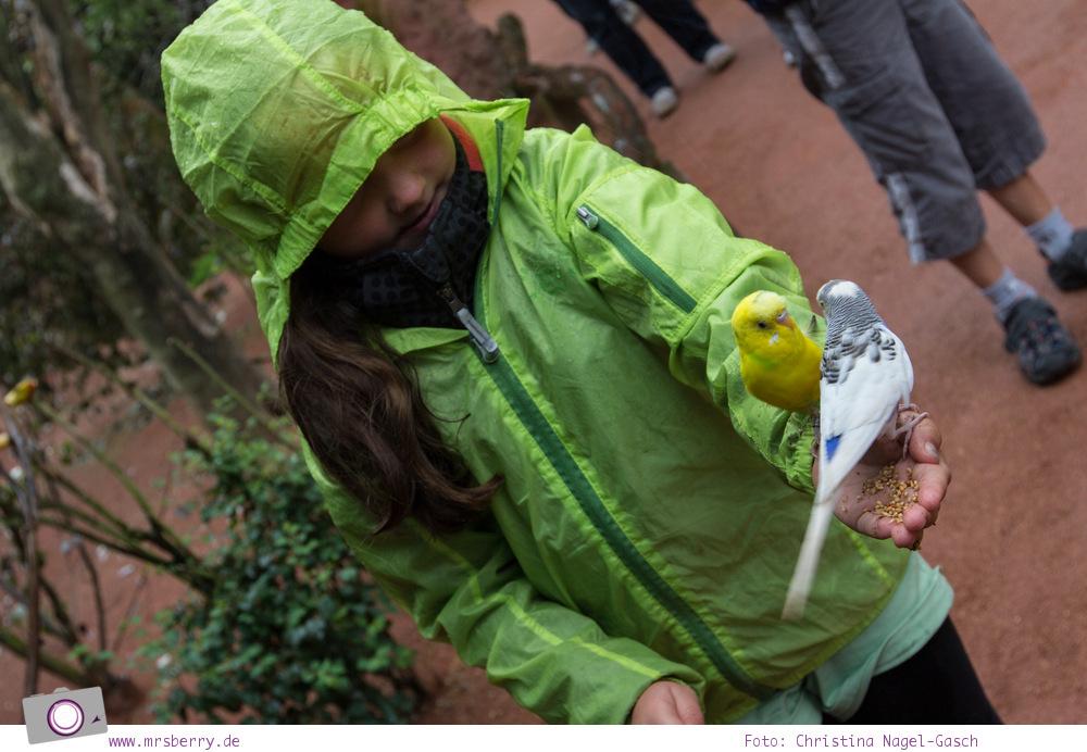 Urlaub an der Ostsee - 4 Tage in Zingst: Ausflug zum Vogelparl Marlow