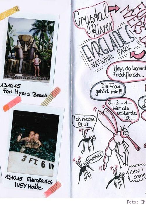 Florida: ein Reisetagebuch in Sketchnotes