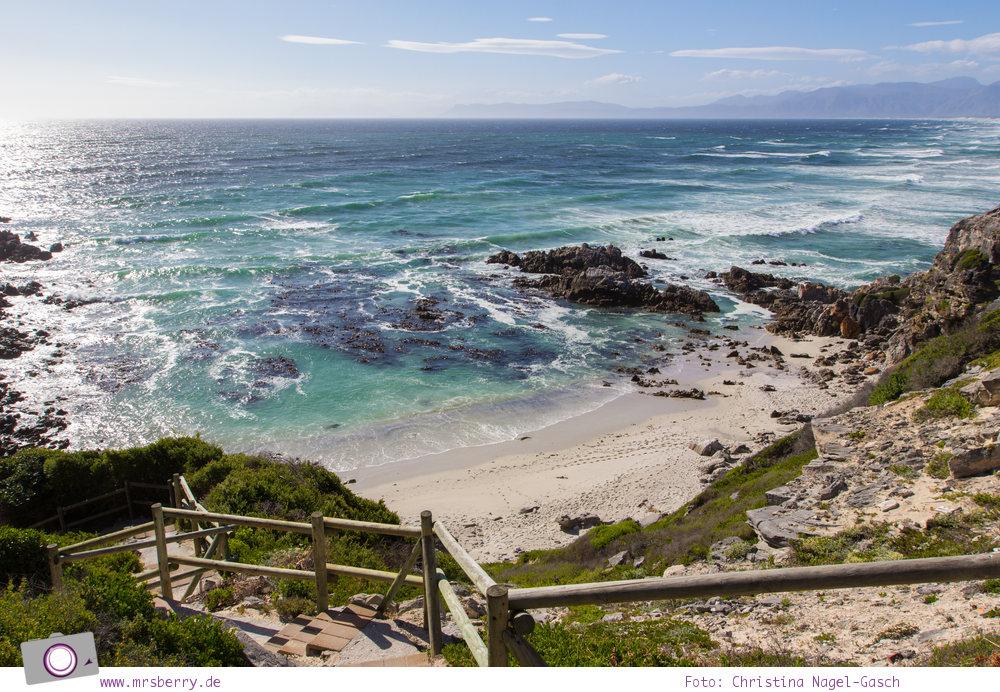 """Südafrika #9: Landausflug vom Grootbos Private Nature Reserve zu den """"De Kelders"""" Höhlen in der Walker Bay"""