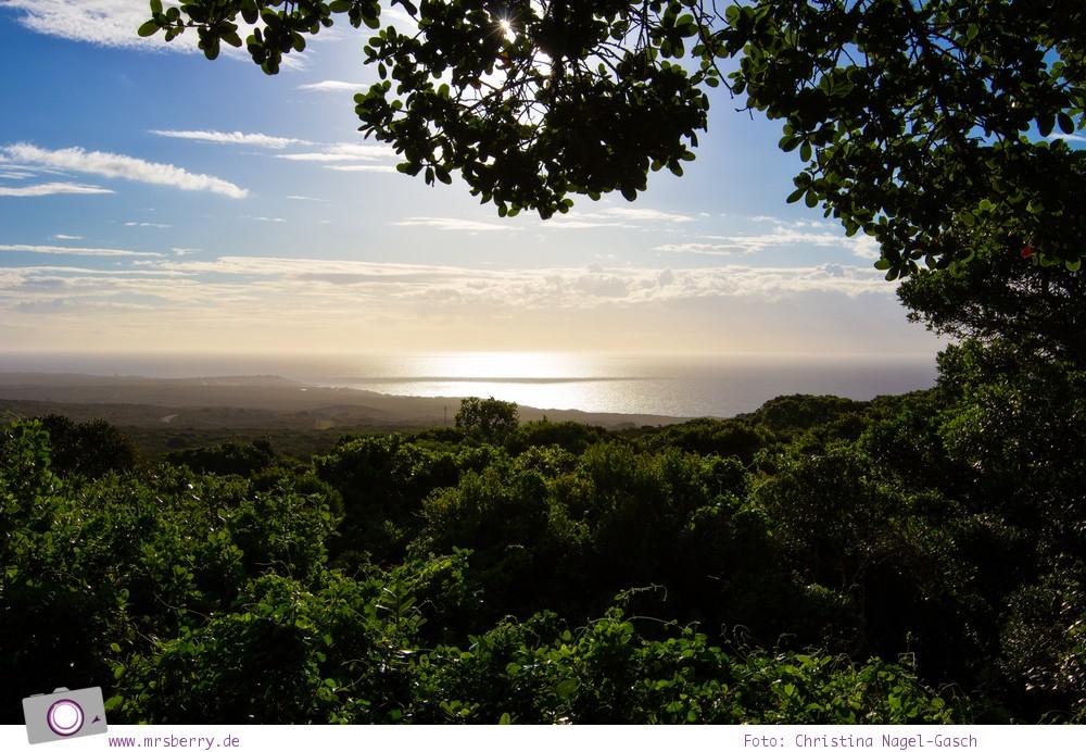 Südafrika #9: Aussicht vom Grootbos Private Nature Reserve auf die Walker Bay