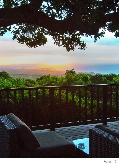 Südafrika #9: Grootbos Private Nature Reserve – Luxus & Natur vereint