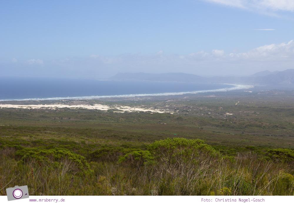 Südafrika #9: 4x4 Blumen Safari im Grootbos Private Nature Reserve mit Aussicht auf die Walker Bay