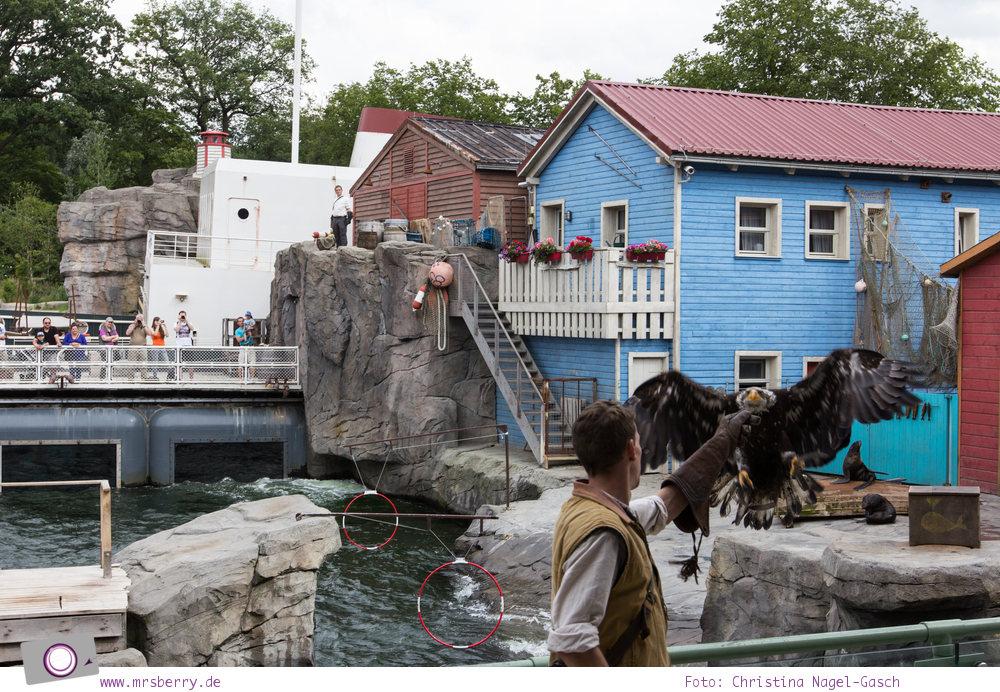 Erlebnis-Zoo Hannover: MrsBerry's Top 5 + 1 Attraktionen - Yukon Stadium mit Robben Show