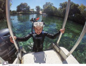 Florida Rundreise: Schwimmen mit Seekühen (Manatees) in der Kings Bay in Crystal River - Zuhause der Seekühe