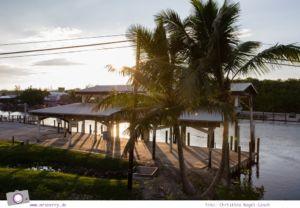 Florida Rundreise: auf dem Tamiami Trail durch die Everglades