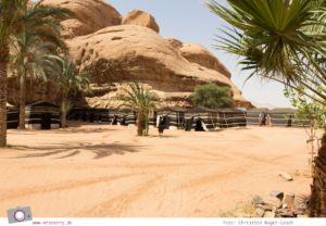 Rundreise Jordanien - ein Reisebericht: Übernachten in der Wüste im Wadi Rum