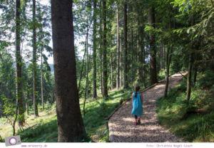 Winterberg im Sommer: Ausflugsziel Erlebnisberg Kappe - Naturerlebnispfad