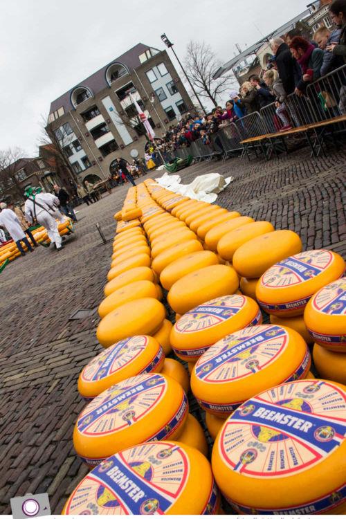 Traditionen & Bräuche: Käsemarkt Alkmaar