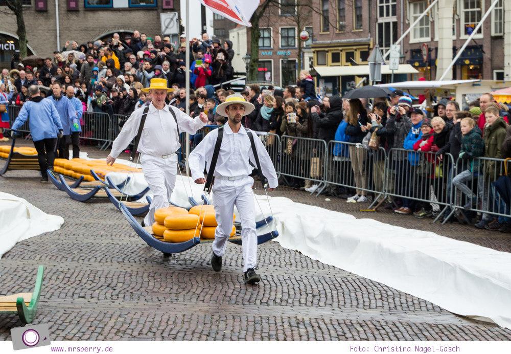 Käsemarkt in Alkmaar: Käseträger bringen den Käse mit einer Tragbahre zu je 8 Laib Käse zum Wiegen in Waagehaus