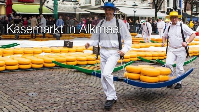 Käsemark in Alkmaar - ein buntes Spektakel um das gelbe Gold