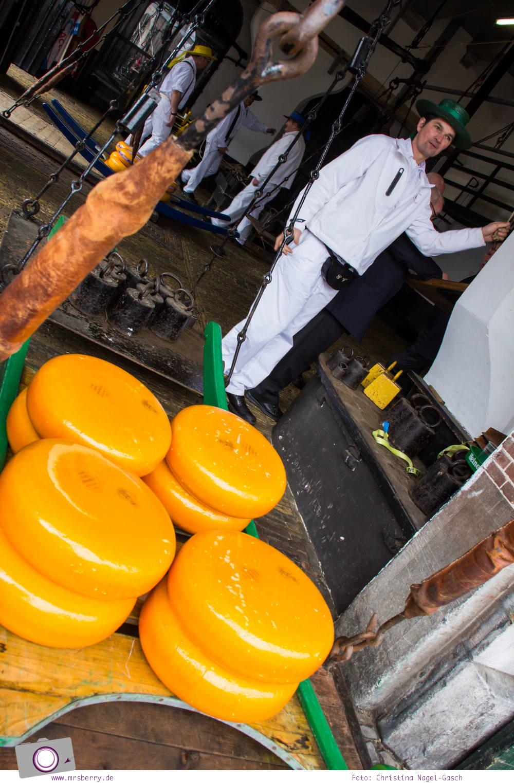 Käsemarkt in Alkmaar: Im Waagehaus wird der Käse im Taschenmann gewogen